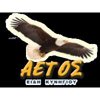Aετός